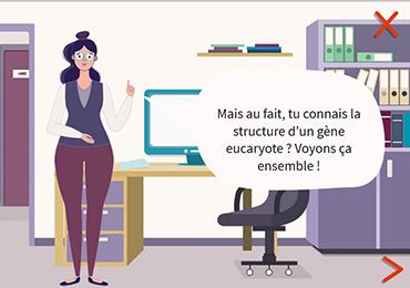 Paris Saclay _ Licence pro
